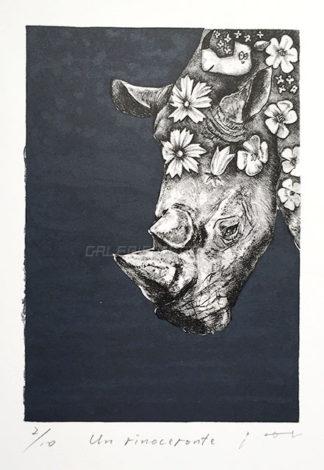 Un rinoceronte