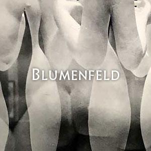 ブルーメンフェルド Blumenfeld